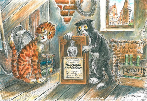 Коты и марципаны