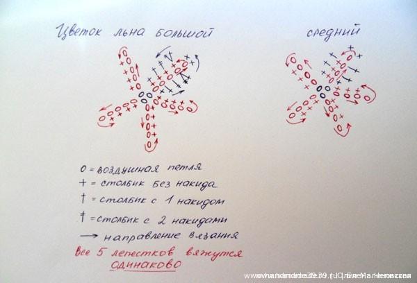Схема вязания цветков льна крючком