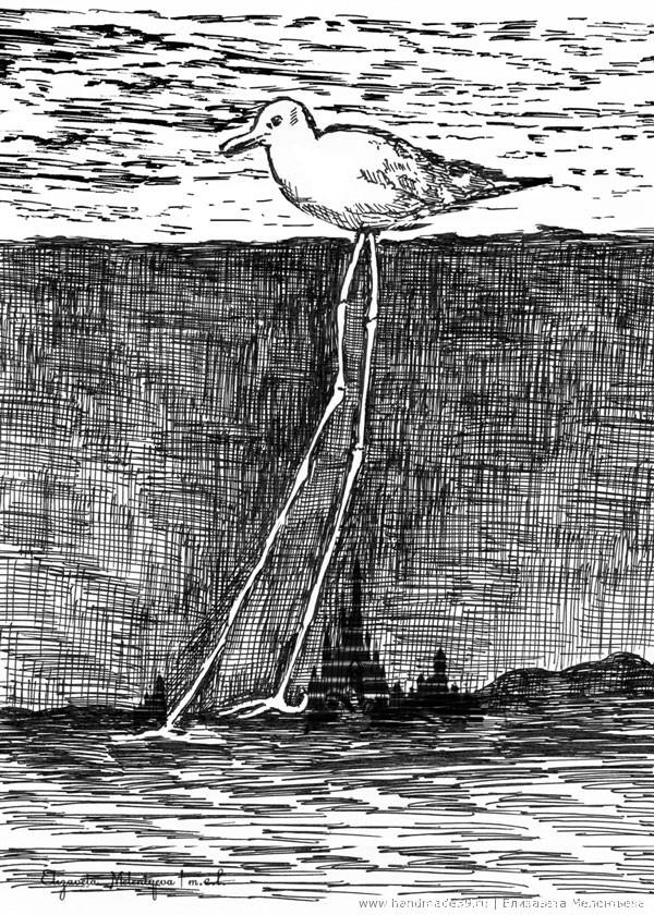 Балтийская чайка Необычайка.