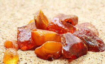 Балтийский янтарь: тайны солнечного камня
