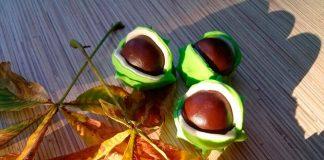 Домашние шоколадные конфеты «Каштан»