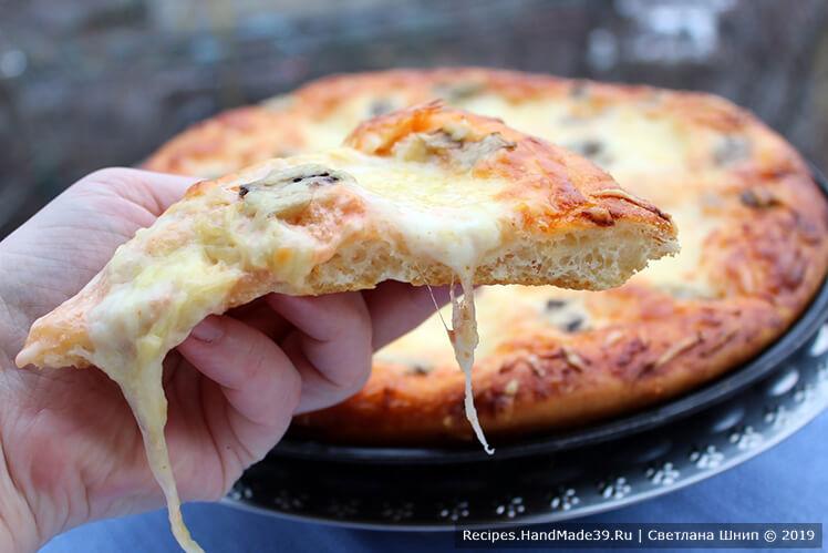 Пицца на кефире и майонезе – рецепт с фото (4 варианта начинок), секреты
